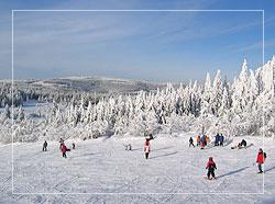 Winter-Schwarzwald